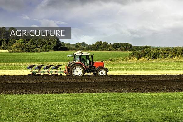 Direkçi Group Agriculture